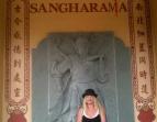 Cat @ Nah Tien Temple